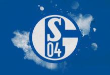 Bundesliga 2018/19: Schalke Bundesliga Tactical Analysis Statistics