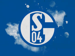Bundesliga 2018/19: Schalke Bundesliga Tactical Analysis Statistics