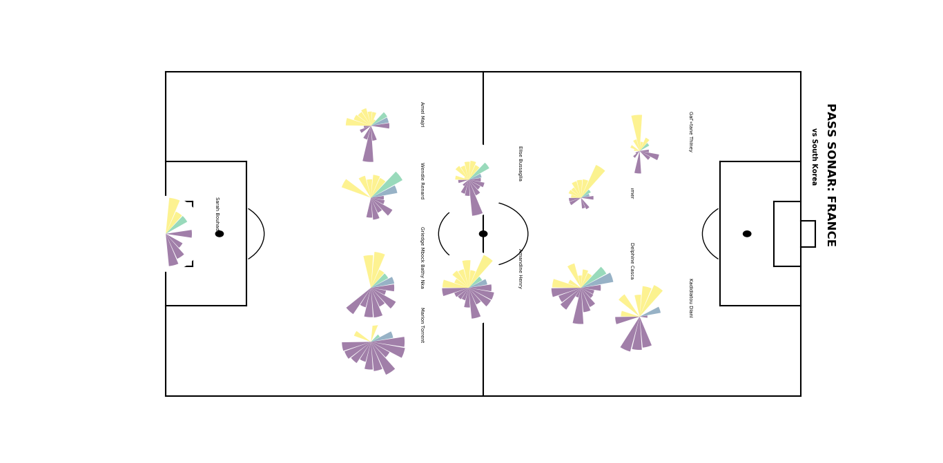 FIFA Women's World Cup 2019 data analysis: France vs South Korea